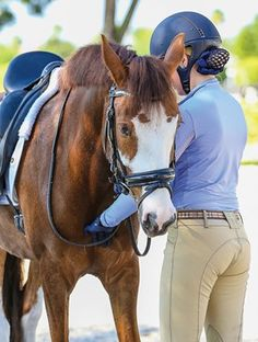 Teaching the Dressage Horse the Rein-Back