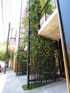 Moldes 4155. Vivir en un departamento como si fuera una casa de barrio. Dos parasoles-aleros alojan bignonias que florecen en invierno y santarritas que lo hacen en verano.