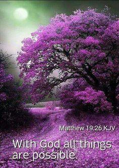 Beautiful tree in purple Beautiful Scenery, Beautiful Landscapes, Beautiful World, Beautiful Flowers, Beautiful Places, Stunningly Beautiful, Natural Scenery, Beautiful Smile, Wonderful Places