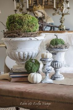 Make your own moss pumpkins for Fall! Vintage Fall Decor, Pumkin Decoration, Autumn Decorating, Decorating Ideas, Craft Ideas, Foyer Decorating, Decor Ideas, Fall Arrangements, Christmas Table Settings