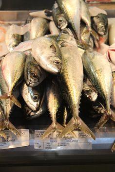 Jerez fish market; mackarel (caballa)