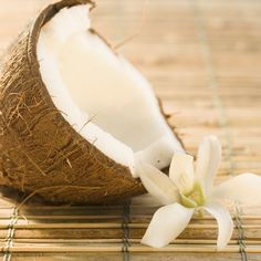 How to Make Coconut Milk, Shredded Coconut, and Coconut Oil in the Ninja Blender…and Get Coconut Water Too!