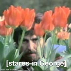 George Harrison, Reaction Pictures, The Beatles, Art, Art Background, Kunst, Performing Arts, Beatles, Art Education Resources