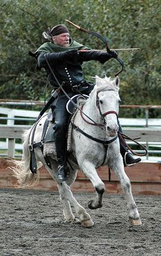 I'd love to learn horse archery!! <3