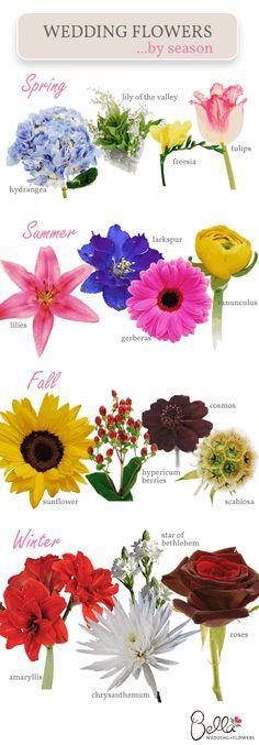 Descubre qué flores habrá el día de tu boda