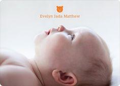 Tiny Teddy Bear Photo Birth Announcement Prints