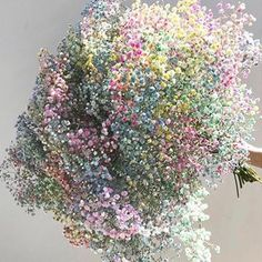 Love this rainbow! Get your bouquet now at 🌸 Keep it forever, this is gorgeous fresh and dry! Rainbow Baby, Flower Making, Wall Collage, Dried Flowers, Flower Power, Wedding Flowers, Floral Wreath, Bouquet, Sparkle