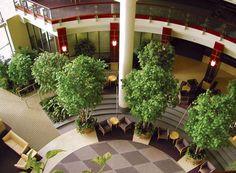 Landscape Portfolio Office Decor Decorating Holiday Green