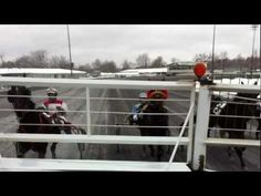 The vantage point from the starting-gate at Saratoga Casino and Raceway! This clip was taken from a Qualiffying Race held on our half-mile track. 2012 marks the 71st season of Live Harness Racing at Saratoga Casino and Raceway in Saratoga Springs, NY.