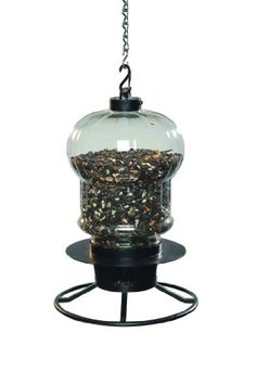 First Nature 3001 Globe Style Seed Selector Feeder