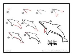 how to draw a dolphin - Yahoo Image Search Results