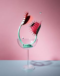 """Victoria Ling Finds Pops of Color in """"Domestic Still Life"""" Photography #photography"""