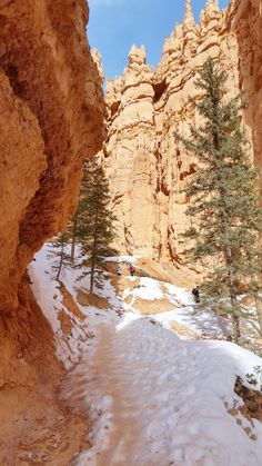 Best Utah national park winter hiking trails in Bryce Canyon National Park - Bucket List Ideas Utah Hiking Trails, Utah Hikes, Colorado Hiking, December Pictures, Winter Hiking, Pumpkin Recipes, Fall Recipes, Us National Parks, Bryce Canyon