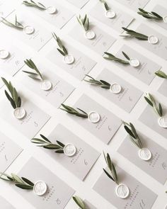 We love the olive branch details on these escort cards! And don& even get us started on those white wax seals!Oh happy wedding day, J&E! Their escort card display is a California dream come true. Perfect forescort cards in a clean and simple design w Wedding Places, Wedding Place Cards, Wedding Escort Card Ideas, Diy Place Cards, Wedding Ideas, Wedding Placecard Ideas, Place Card Table, Wedding Advice, Wedding Colors