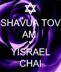 Image result for shavua tov pictures