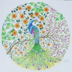 27 February 2016 : Coloring - The Proud Peacock (Secret Garden by Johanna Basford)