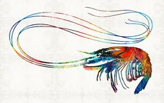 Colorful Shrimp Art By Sharon Cummings by Sharon Cummings #shrimp #seafood