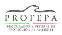 """#Entérate: INTENSIFICA PROFEPA BÚSQUEDA DE TIGRE EN COYUCA DE BENÍTEZ Y REUBICA 3 GRANDES FELINOS DE LA UMA """"PARAÍSO DE LOS MANGLARES"""" - http://www.tvacapulco.com/enterate-intensifica-profepa-busqueda-de-tigre-en-coyuca-de-benitez-y-reubica-3-grandes-felinos-de-la-uma-paraiso-de-los-manglares/"""