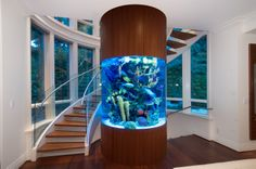 Modern staircase winding around a tank of exotic fish in an incredible West Vancouver home #blurrdMEDIA #architecture #photography