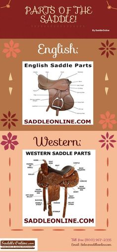 Parts Of The Saddle | saddleonline.com