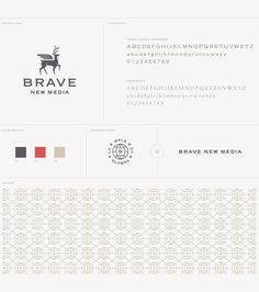 Brave New Media | Studio MPLS | Packaging and Branding Design | Minneapolis, MN