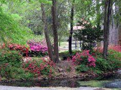 Fragrance Garden, Greenfield Lake by ECV-OnTheRoad, via Flickr