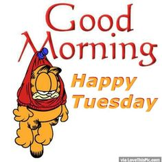 good morning happy tuesday | Garfield Good Morning Happy Tuesday Pictures, Photos, and ...