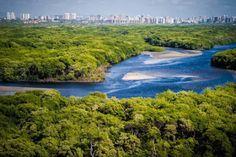 Pregopontocom Tudo: Abraço simbólico alerta para ameaça a área de proteção ambiental em Fortaleza