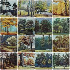 Russian Forest. Set of 16 Vintage Soviet от RareBooksAndMore