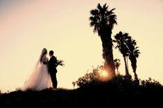 Shed, Weddings, Concert, Rose, Pink, Wedding, Concerts, Roses, Marriage