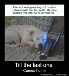 """Reminds me of how my husband and our dog """"talk"""" over Skype."""