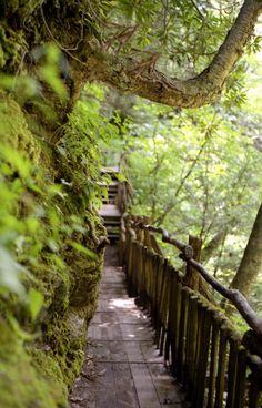 20 Incredible Hikes Under 5 Miles Everyone In Pennsylvania Should Take. Bushkill Falls, Stroudsburg