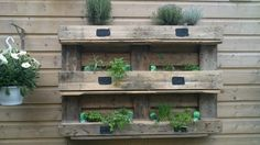 Herb garden made out of palletwood