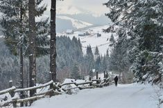 sursa foto Civilizatia Montana1 Snow, Outdoor, Pictures, Outdoors, Outdoor Games, The Great Outdoors, Eyes, Let It Snow