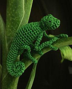 Chameleon by Andrea Blumberg