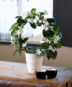 Fascinating Tips: Artificial Garden Plants Green Walls artificial grass bob vila.Artificial Flowers Gift artificial plants ideas home decor.Artificial Plants Cheap Home Decor. Artificial Plants And Trees, Artificial Plant Wall, Artificial Flower Arrangements, Artificial Flowers, Leafy Plants, Indoor Plants, Indoor Outdoor, Cool Ideas, Office Plants