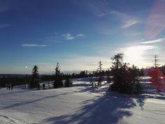 Levi Lapland Finland | Travel inspiration | Pitsiniekka Finland Travel, Lapland Finland, Travel Inspiration, Travel Destinations, Outdoor, Road Trip Destinations, Outdoors, Destinations, Outdoor Games