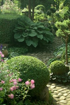 Boxwoods create the structure,hostas and other flowering plants help soften