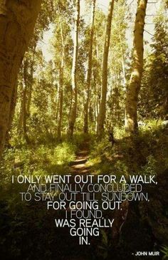 """""""I only went out for a walk, and finally concluded to stay out till sundown, for going out, I found, was really going in."""" ~John Muir ..*"""