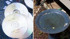 By recycling and reusing old and broken CDs, we can stop unnecessary pollution. See how recycled CDs can turn into decorative household items and DIY ideas. Old Cd Crafts, Crafts To Sell, Diy And Crafts, Cd Diy, Mosaic Flower Pots, Ways To Recycle, Bored Panda, Craft Videos, Mosaic Tiles