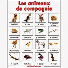 ON Y VA!: LES ANIMAUX