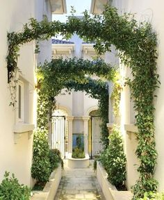 Vine covered arches and planters dress this passage between buildings.