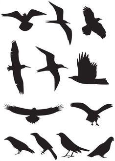 silhouette-birds
