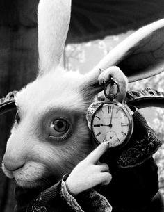 Alice | White Rabbit