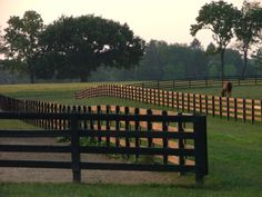 Pasture with needing LARGE RUN INS, where I cared for the Gypsy Horses there were Misters and Fans Dream Stables, Dream Barn, Horse Stables, Horse Barns, Pasture Fencing, Horse Fencing, Farm Fence, Vie Simple, Horse Ranch