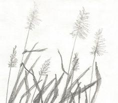 Trzcina by kajtek21.deviantart.com on @DeviantArt Drawing Sketches, Drawings, Diy Ideas, Pencil, Landscape, Plants, Scenery, Sketches, Craft Ideas