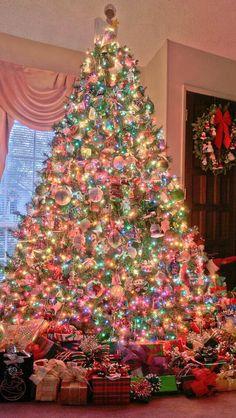 Beautiful Christmas Tree a useful guide to pick the right christmas tree | real christmas