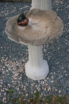 Small lily pad birdbath with a frog