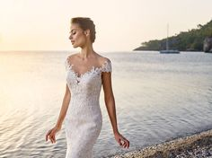 Dreams Style Corsica  Pizzo / Tulle      Light Gold / Ivory Skin   Ivory Skin