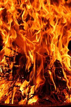 Gerade Gefunden Auf Http://www.fineartprint.de. FireSearchingSearch